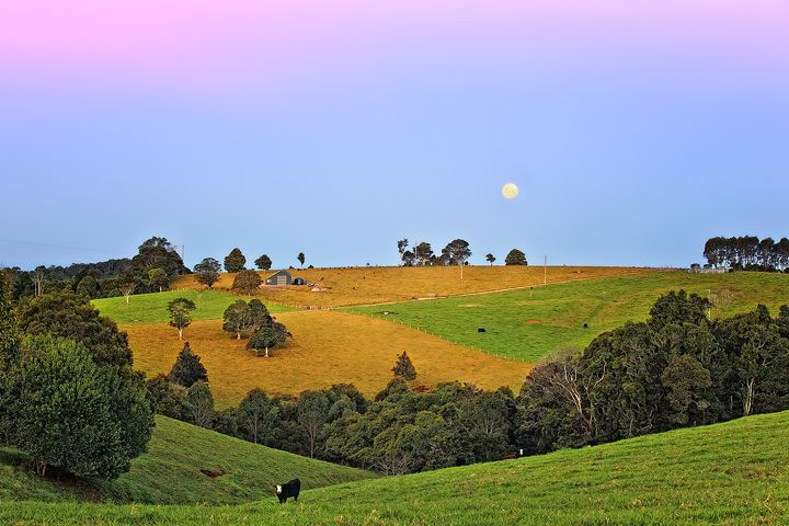Sydney To Southern-Tablelands Removalists